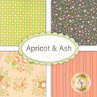 go to Apricot & Ash