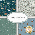 go to Camp Woodland