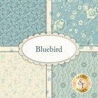 go to Bluebird