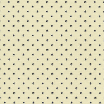 Buttermilk Basics C9180-NAVY by Stacy West for Riley Blake Designs