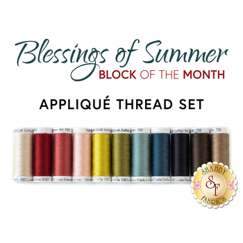 Blessings of Summer Quilt BOM - 11pc Applique Thread Set - RESERVE