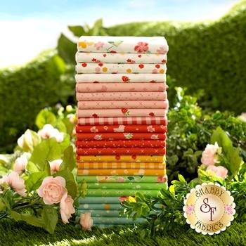 Strawberry Honey  24 FQ Set by Riley Blake Designs